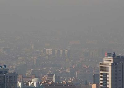 El aire contaminado nos est matando el for Como purificar el aire contaminado